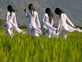 大陸新娘比較好還是越南新娘比較好?